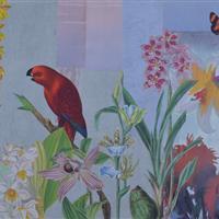 Anmutige Vögel im Orchideenbeet