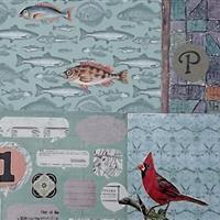 Kardinalvogel und Fischschwarm